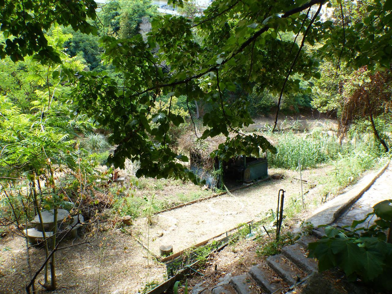 P1040029 jpg for Amenagement jardin 500m2